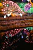 Demostración de la linterna en zigong, China Foto de archivo