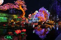 Demostración de la linterna en zigong, China en 2014 Fotografía de archivo libre de regalías