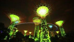 Demostración de la luz de la arboleda de Supertree en los jardines por la bahía en Singapur metrajes