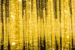 Demostración de la luz de la Navidad en Vancouver Imagen de archivo libre de regalías