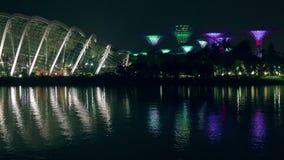 Demostración de la luz de la noche de Singapur en jardines por la bahía almacen de metraje de vídeo