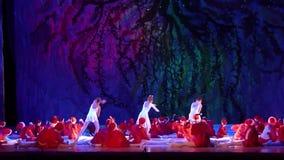 Demostración de las perlas del ballet metrajes