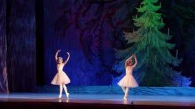 Demostración de las perlas del ballet almacen de metraje de vídeo