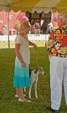 Demostración de perro de la feria de condado de Skagit 4H Fotografía de archivo libre de regalías