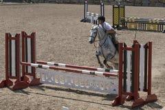 Demostración de salto del caballo Fotografía de archivo libre de regalías