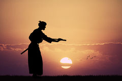 Demostración del Aikido en la puesta del sol Fotografía de archivo
