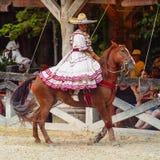 Demostración del caballo en México Fotografía de archivo libre de regalías