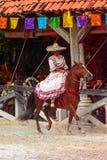 Demostración del caballo en México Imagen de archivo