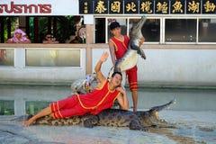 Demostración del cocodrilo en la granja y el parque zoológico del cocodrilo de Samutprakarn Imagenes de archivo