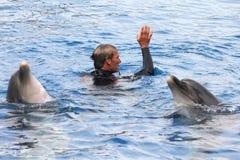 Demostración del delfín Imagen de archivo libre de regalías