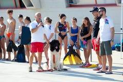 Demostración del rescate con los perros del salvavidas Imagen de archivo