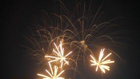 Demostración hermosa de los fuegos artificiales en el cielo nocturno almacen de video