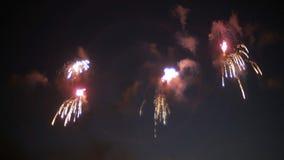 Demostración hermosa de los fuegos artificiales en el cielo nocturno almacen de metraje de vídeo