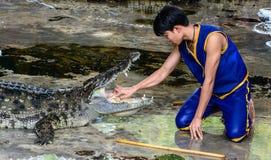 Demostración peligrosa del cocodrilo Foto de archivo libre de regalías