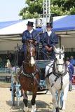 Demostración real del caballo de Windsor Foto de archivo libre de regalías