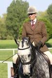 Demostración real del caballo de Windsor Imagen de archivo libre de regalías