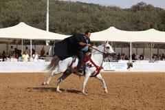 Demostración y campeonato árabes del caballo Imagen de archivo