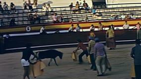 Demostraci?n de la tauromaquia de Ibiza almacen de metraje de vídeo
