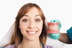 Demostraciones del dentista cómo aplicar un apoyo imagen de archivo libre de regalías