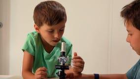 Den äldre brodern ger det mer ung ett mikroskop lager videofilmer