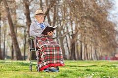 Den äldre gentlemannen som läser en bok parkerar in Royaltyfri Bild