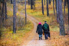 Den äldre mannen och kvinnan promenerar banan bland träden till och med skogen i höst royaltyfri fotografi