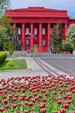 Den äldsta röda byggnaden av Taras Shevchenko National University av Kyiv kombineras harmoniously med röda tulpan på arkivbilder