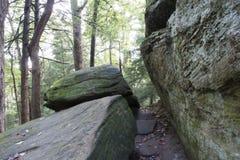 Den åtsittande åtstramningen, Hocking kullar påstår skogen royaltyfri foto