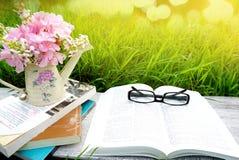 Den öppna boken, solglasögon, böcker, rosa färger blommar över bakgrund för grönt gräs för natur fotografering för bildbyråer