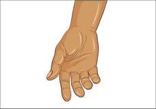 Den öppna gesten gömma i handflatan Handen ger sig eller mottar white för vektor för bakgrundsillustrationhaj Royaltyfri Foto