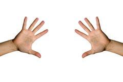 den öppna handen gömma i handflatan Fotografering för Bildbyråer