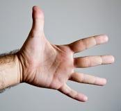 Den öppna male handuppvisningen gömma i handflatan och öppnar fingrar Arkivbild