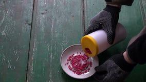 Den öppnande giftliga flaskan för nytt gift för plåga tjaller musen stock video