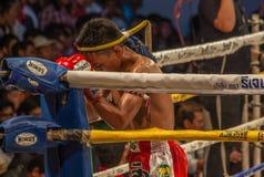 Den över hela världen berömda muay thai stridigheten, Thailand fotografering för bildbyråer