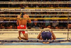 Den över hela världen berömda muay thai stridigheten, Thailand royaltyfria bilder