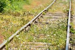 Den övergav järnvägen var bevuxen med gräs, nära staden arkivbild