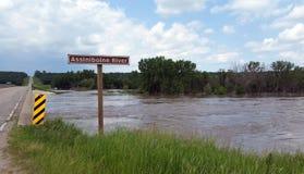 Den översvämmade Assiniboine floden, nära Treherne, Manitoba Royaltyfri Fotografi