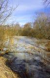 Den översvämmade våren Arkivfoto
