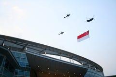 den 2009 dag nationalen ståtar singapore Arkivfoton