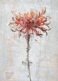 den abstrakt blommaillustrationen för kortet etc royaltyfria bilder