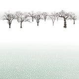 Trees i vinter landskap Fotografering för Bildbyråer