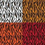 Den abstrakt tigern flår mönstrar Arkivbild