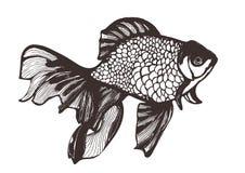 Den abstrakta fisken skissar, handteckningen, vektorillustrationen, färgläggningbok Dekorativ handgjord beståndsdel, tatuering so Arkivbild