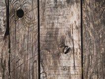 Den abstrakta träbakgrundstexturen av ridit ut gammalt sörjer boaen royaltyfri fotografi