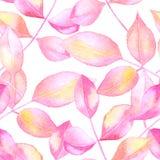 Den abstrakta vektorn steg sömlös bakgrund för sidavattenfärgen Royaltyfri Foto