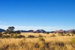 Den afrikanska savannaen landskap Royaltyfri Fotografi