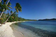 Den alabaster- stranden i Fiji Arkivbild