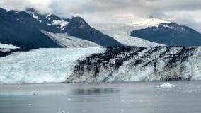 Den Alaska Harvard för fjorden för den Harvard glaciärhögskolan armen med snö täckte bergmaxima och det lugna Stilla havet med is arkivfoton