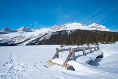 den alberta banff bowKanada laken lokaliserade nationalparken Arkivbild