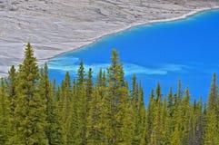 den alberta banff Kanada laken lokaliserade nationalparkpeyto Royaltyfri Bild